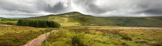 Panorama d'horizontal de campagne Image libre de droits