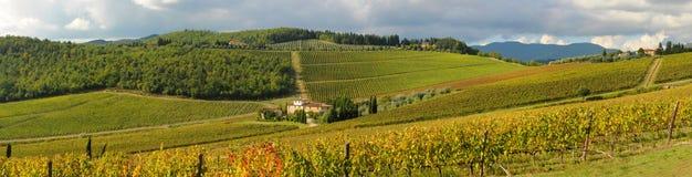 Panorama d'un vignoble dans le chianti, Toscane images libres de droits