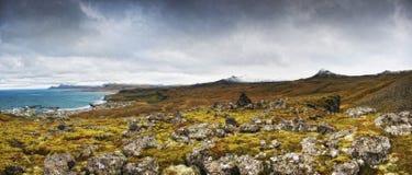 Panorama da costa de Icealnd Imagens de Stock