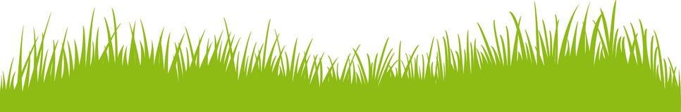 Panorama da grama/prado/gramado Imagens de Stock