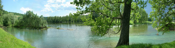 Panorama da lagoa com água e a floresta de turquesa Fotografia de Stock Royalty Free
