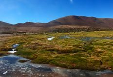 Panorama da lagoa das montanhas e do lago de Bolívia Foto de Stock