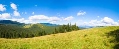Panorama da montanha do verão. Imagens de Stock Royalty Free