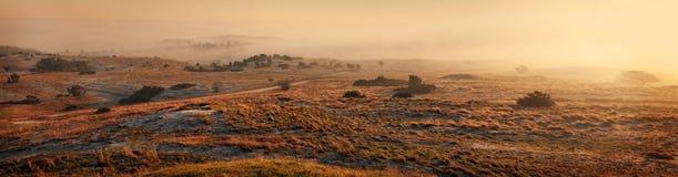Panorama da névoa da paisagem Fotos de Stock Royalty Free
