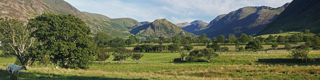 Panorama da paisagem Imagem de Stock