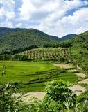 Panorama da paisagem Fotografia de Stock Royalty Free