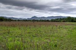 Panorama da paisagem da montanha, beleza da natureza fotografia de stock