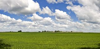Panorama da paisagem de Lithuania Imagem de Stock