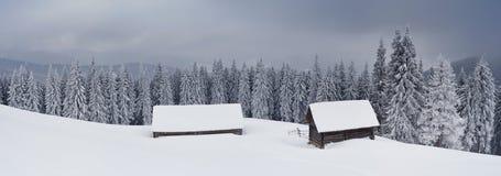 Panorama da paisagem do inverno Imagem de Stock