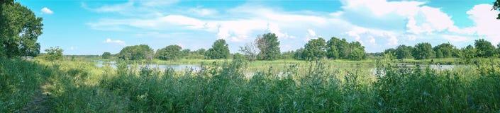 Panorama da paisagem da floresta Prado, lago e floresta Fotografia de Stock