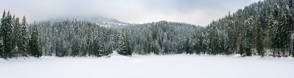 Panorama da paisagem montanhosa do inverno bonito imagem de stock royalty free