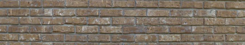 Panorama da parede de tijolo imagem de stock