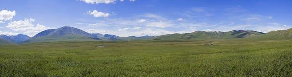 Panorama da passagem de Oroi Altai, Rússia imagens de stock royalty free