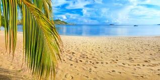 Panorama da praia imagem de stock royalty free