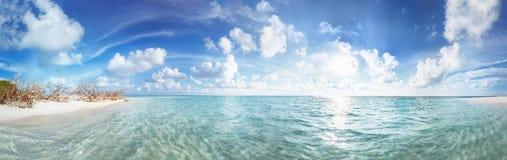Panorama da praia na ilha Fulhadhoo de Maldivas com a praia e a palma perfeitas idílico arenosas brancas do mar e da curva imagem de stock