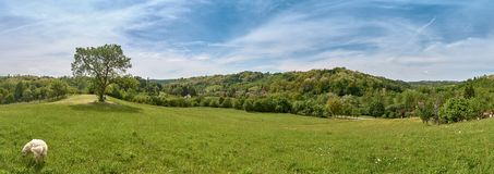 Panorama da vila de Ciglenica perto de Kutina no dia ensolarado da mola foto de stock