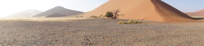 Panorama das dunas em Namíbia Fotos de Stock