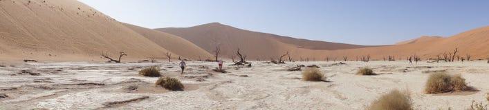 Panorama das dunas em Namíbia Foto de Stock