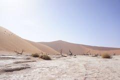 Panorama das dunas em Namíbia Imagem de Stock Royalty Free