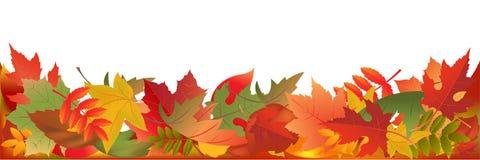 Panorama das folhas de outono ilustração royalty free