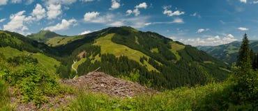 Panorama das montanhas do verão Fotos de Stock Royalty Free