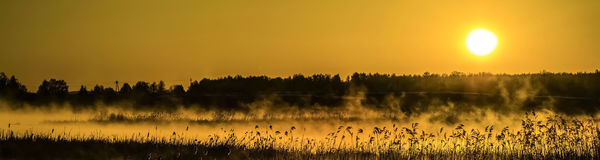 Panorama of the dawn on the river Royalty Free Stock Image