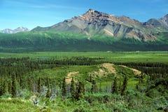 Panorama de Alaska imagen de archivo