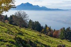 Panorama de bâti Pilatus et de luzerne de lac couverte de grenouille, Alpes, Suisse Photographie stock