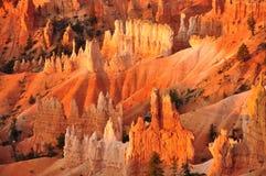 Panorama de Bryce Canyon Utah, los E.E.U.U. Fotos de archivo