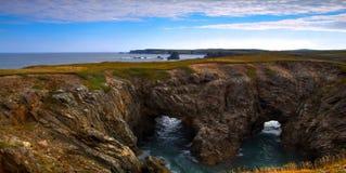 Panorama de côte de Terre-Neuve image libre de droits