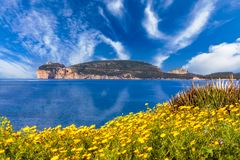 Panorama 03 de Caccia de capo image libre de droits