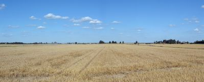 Panorama de campagne Photo stock