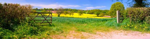 Panorama de campos ingleses Imagen de archivo libre de regalías