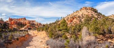 Panorama de canyon de l'eau Photographie stock