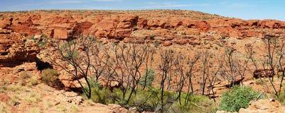 Panorama de Canyon du Roi image stock