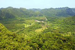 Panorama de Cat Ba National Park Imagem de Stock