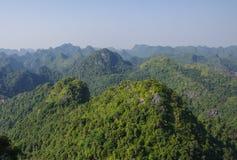 Panorama de Cat Ba National Park Foto de Stock