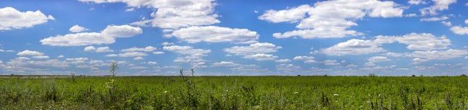 Panorama de champ image libre de droits