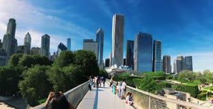 Panorama de Chicago Imagem de Stock