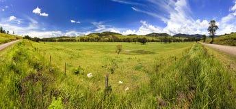 Panorama de Cobark de camp de BTops Photographie stock libre de droits
