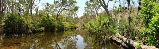 Panorama - de dalingen van Edith, het Nationale Park van Nitmiluk, Noordelijk Grondgebied, Australië stock foto