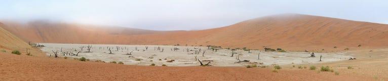 Panorama de Deadvlei Fotografía de archivo