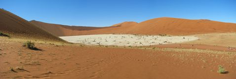 Panorama de Deadvlei, Sossusvlei fotografia de stock royalty free