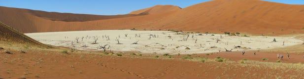 Panorama de Deadvlei, Sossusvlei foto de stock