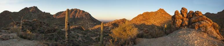 panorama de 180 degrés de désert de sonoran Photographie stock libre de droits