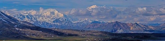 Panorama de Denali Imagen de archivo libre de regalías