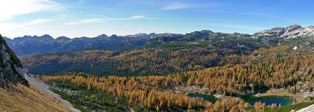 Panorama de Dolina Triglavskih Jezer de los alerces del otoño de Triglav NP Imagen de archivo