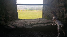 Panorama de Dublín Imagen de archivo libre de regalías
