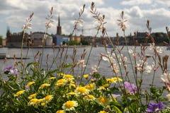 Panorama de Estocolmo Fotos de archivo
