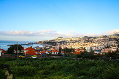 Panorama de Funchal de point de vue Vila Guida Photos libres de droits